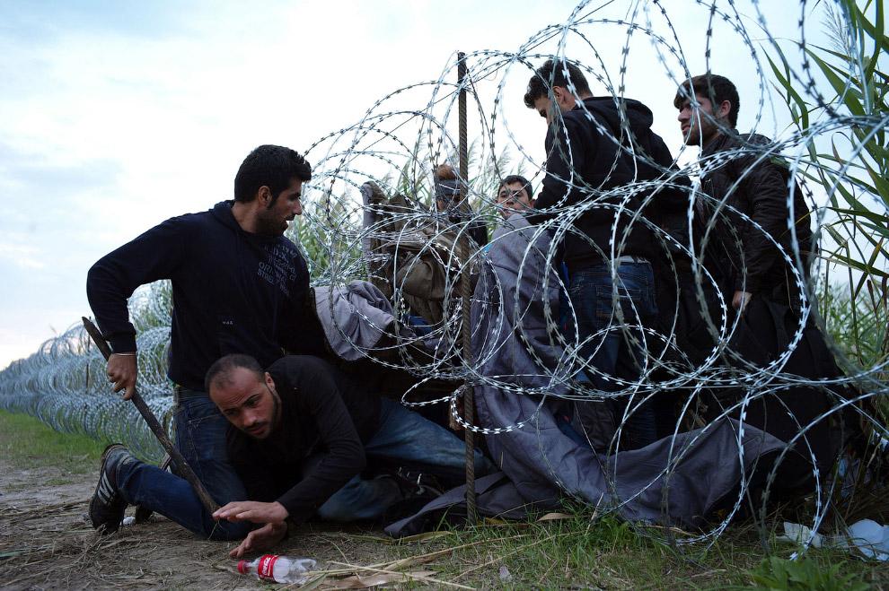 Нелегальное пересечение венгерско-сербской границы