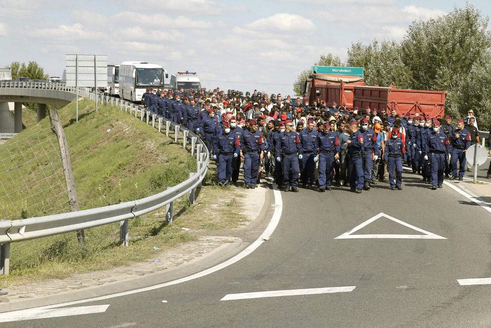 Отряд полицейских сопровождает мигрантов в Венгрии
