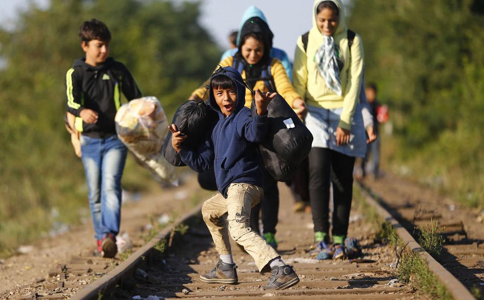 Мигранты на венгерско-сербской границе