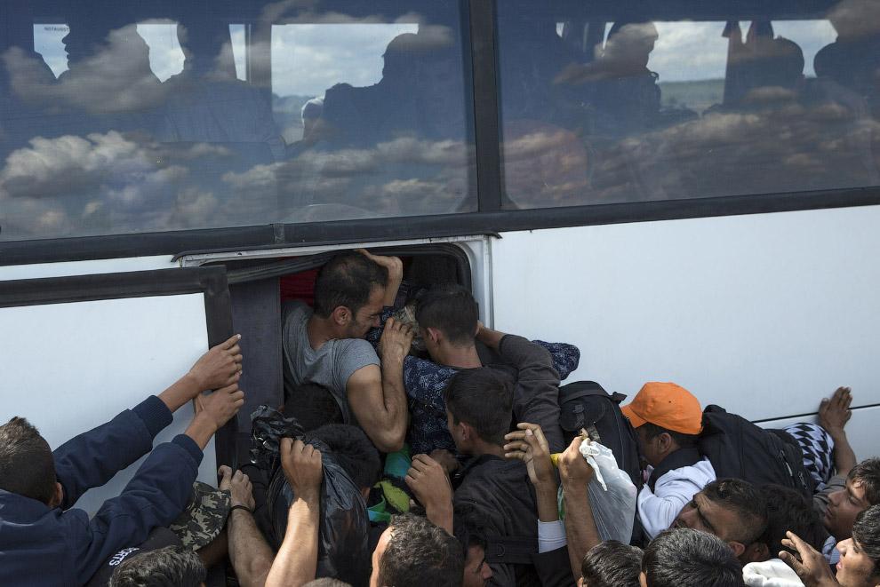 Битва за автобус в лагере беженцев в Венгрии