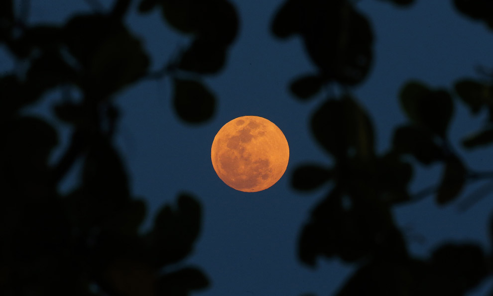 Кровавая луна в Рио-де-Жанейро, Бразилия