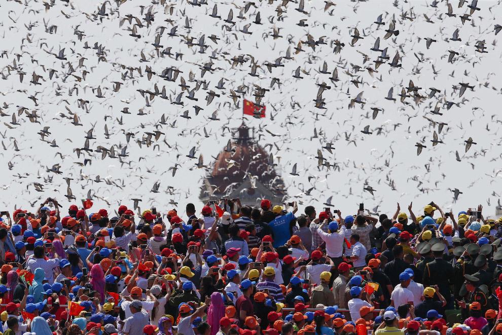 Во время военного парада в Пекине в небо выпустили птиц