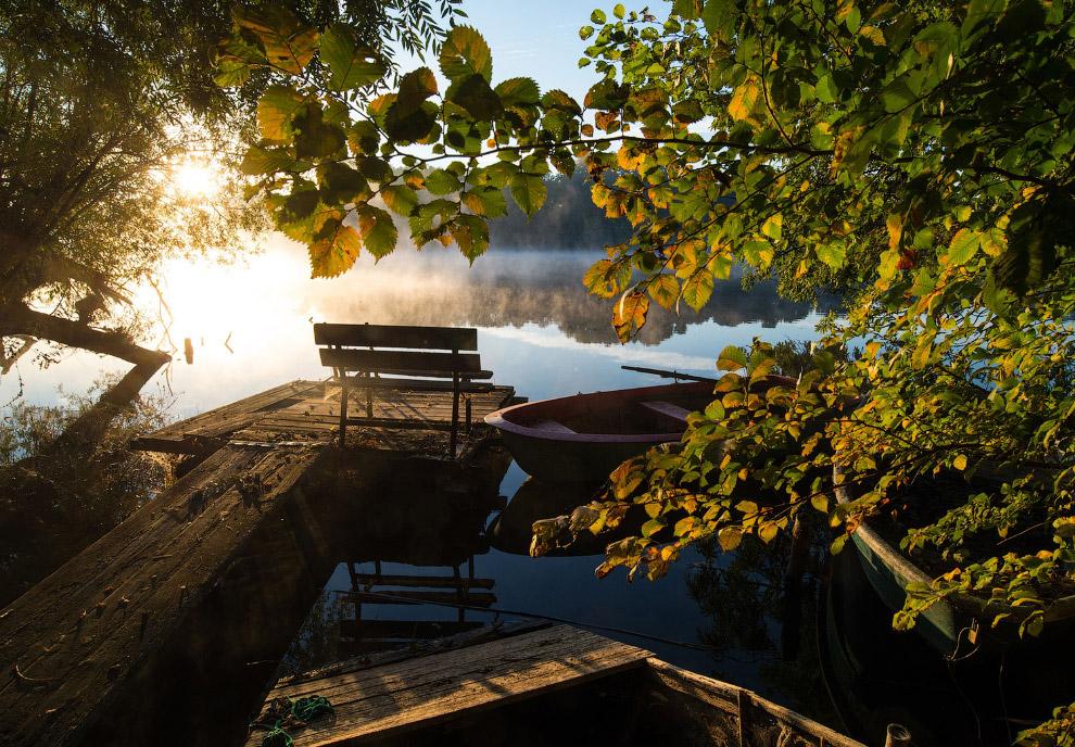 Осеннее утро и туман в Германии