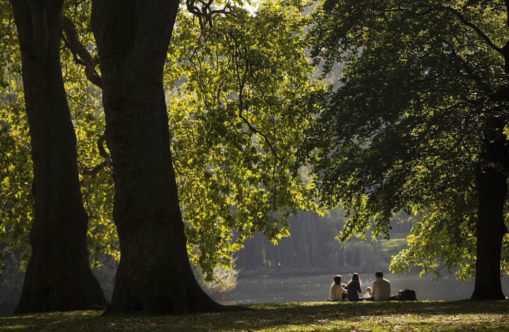 Осенний день в парке Сент-Джеймс в Лондоне