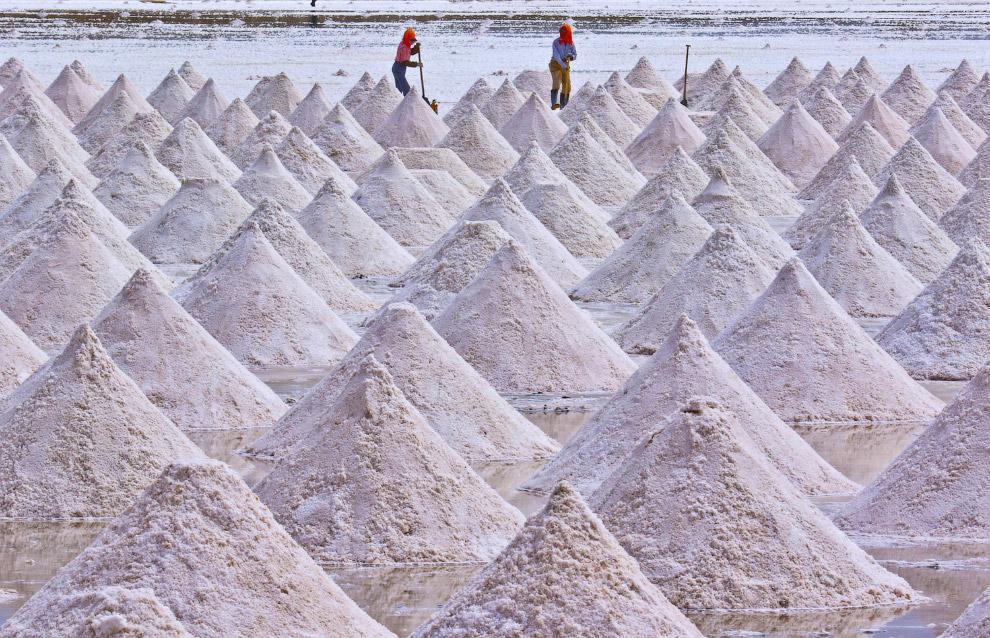 Сбор соли