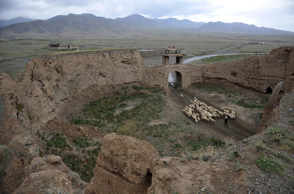 Пастух и древний город Yongtai