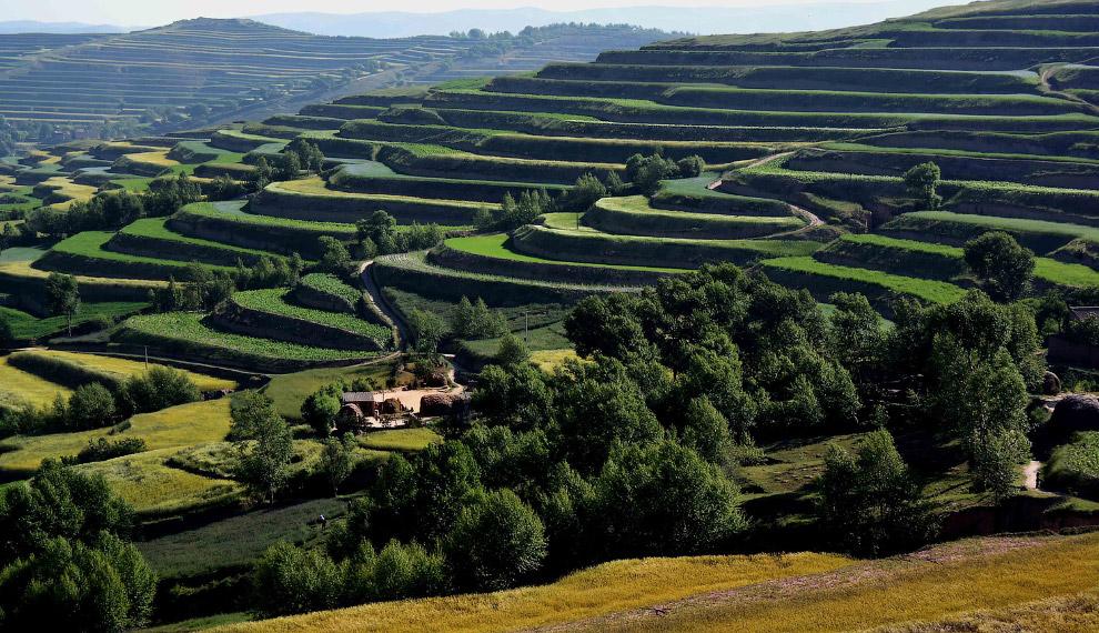 Сельскохозяйственные террасы в провинция Ганьсу