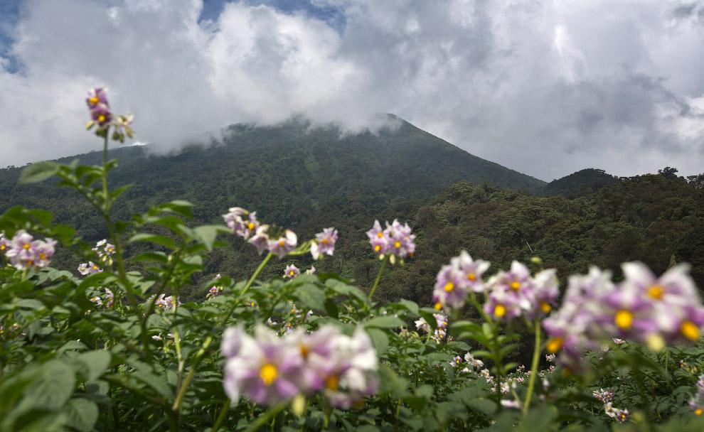 Пейзажи Национального парка Вулканов