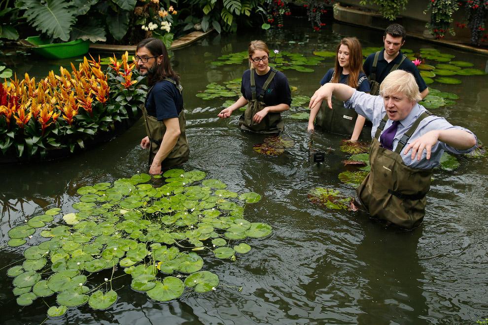 В Королевском ботаническом саду