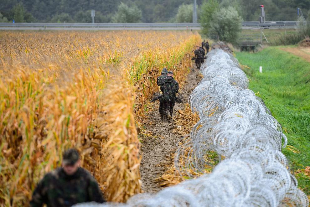 На границе Словении с Венгрией