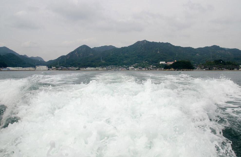 Заячий остров