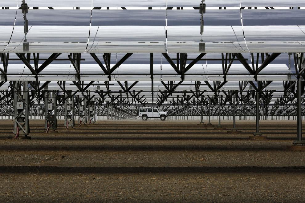 Полевые цветы в округе как бы намекают на экологичность этого завода по производству электроэнергии