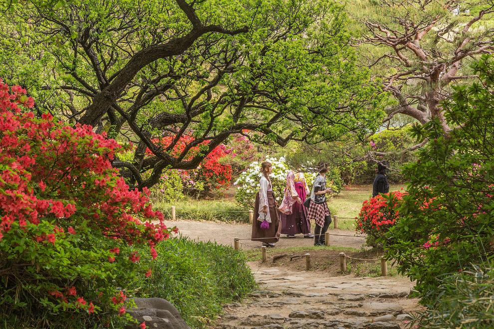 Сад Рикугиен