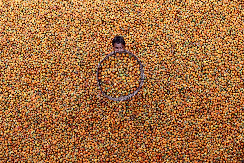 Продавец бетельных орехов, Бангладеш
