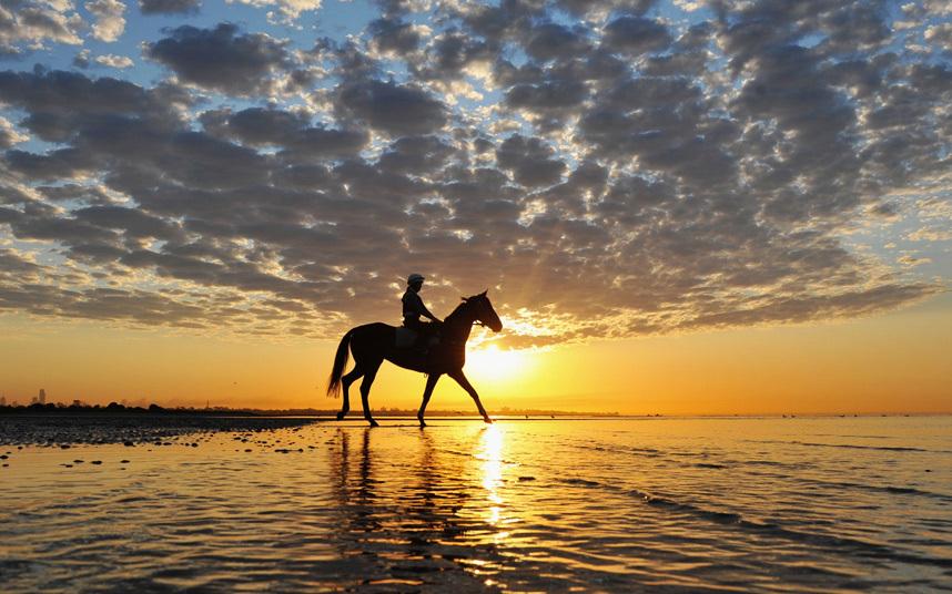 Конная прогулка на закате в Мельбурне, Австралия