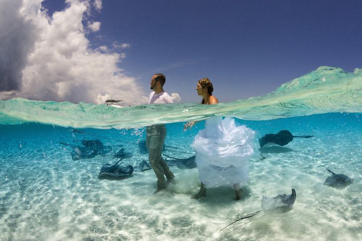 Необычная свадебная фотосъемка на Каймановых островах