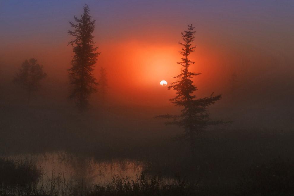 Пейзаж в Новом Уренгое, Россия