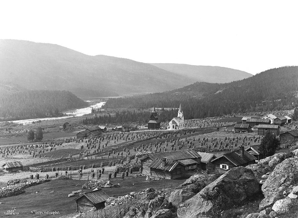 Пейзажи 1890 и 2004 годо