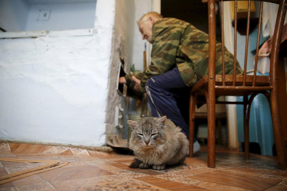 Русская печка и кошка
