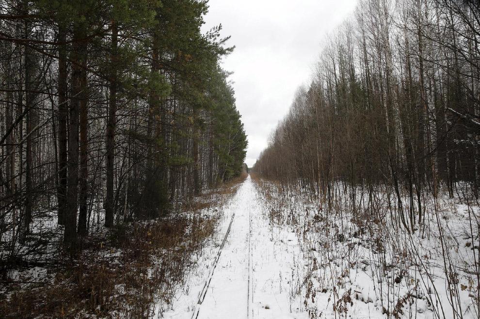 Местные пейзажи в районе села Санкино, Свердловская область