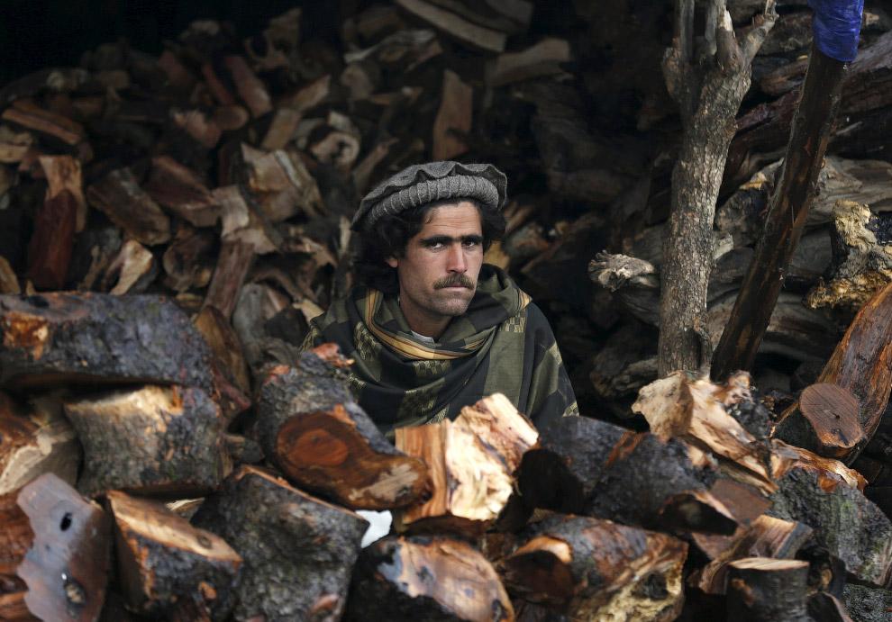 Продавец дров, Кабул, Афганистан