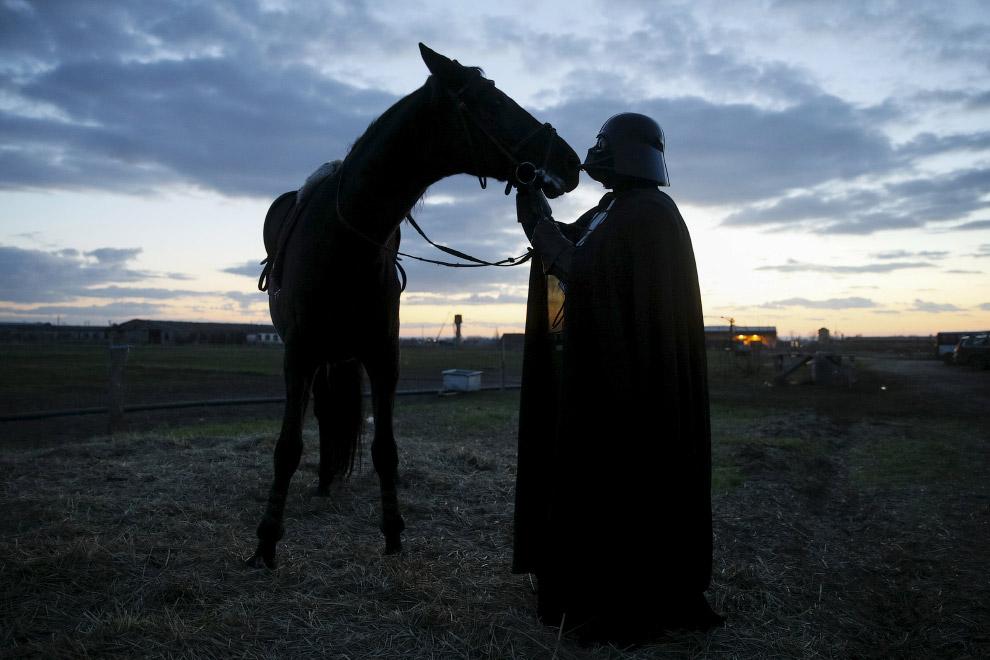Дарт Николаевич Вейдер и лошадь