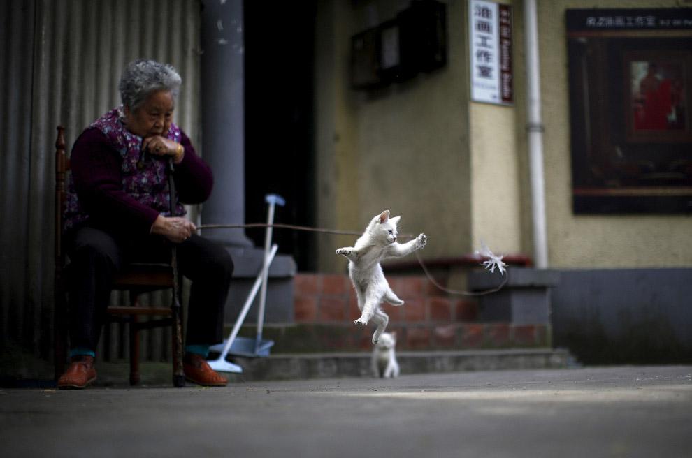 Женщина и игривый котенок в центре Шанхая