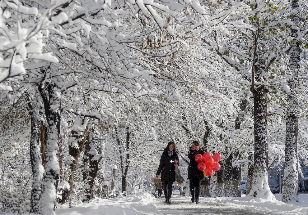 Снежная аллея в Алматы, Казахстан