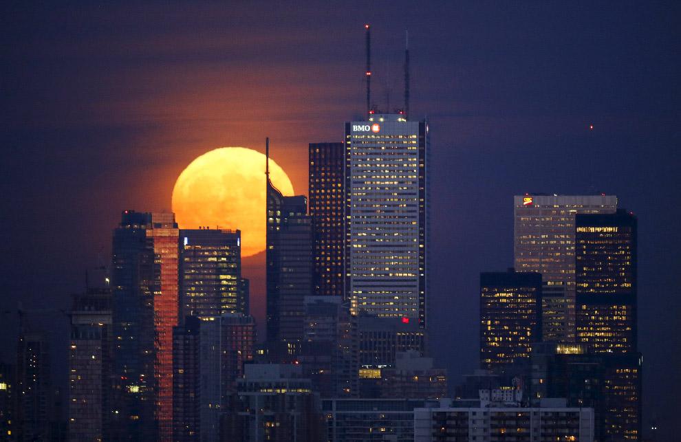 Луна в Торонто, Канада