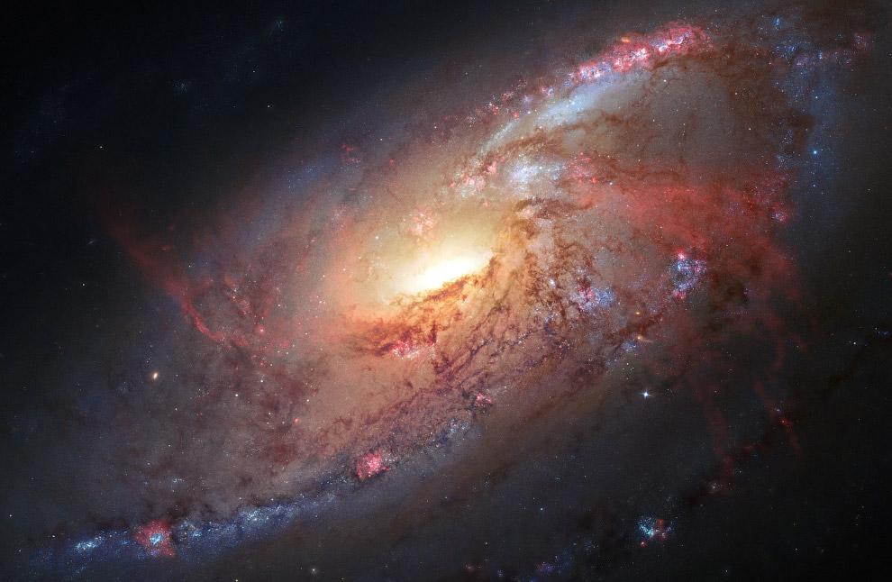 Спиральная галактика M 106 в созвездии Гончие Псы