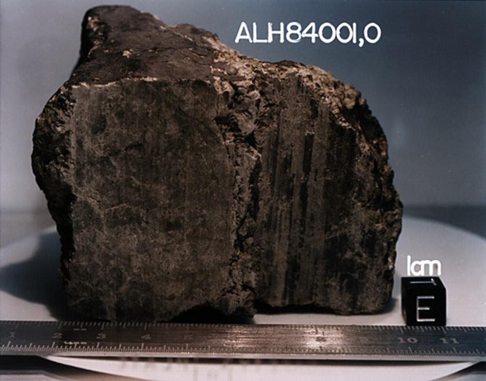 АLH84001