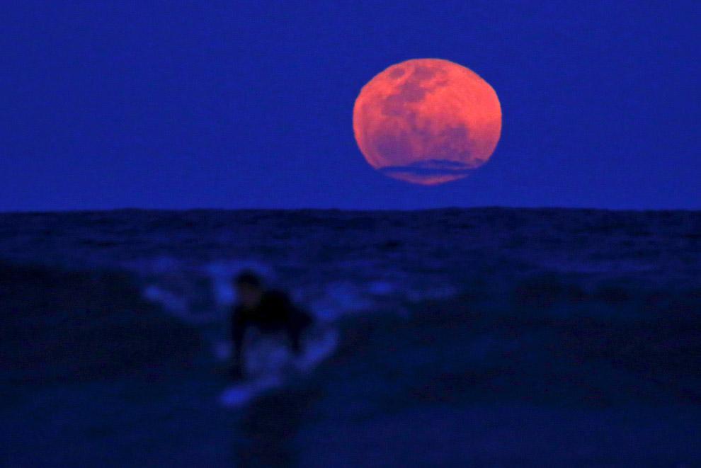 Серфер и Луна, Сидней, Австралия