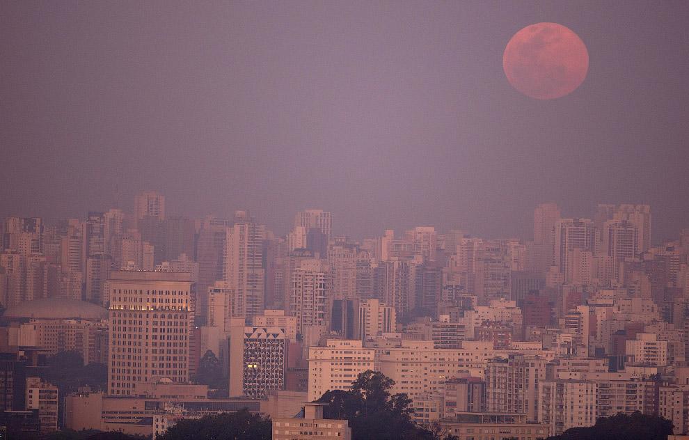 Суперлуние над небоскребами в Сан-Паулу, Бразилия