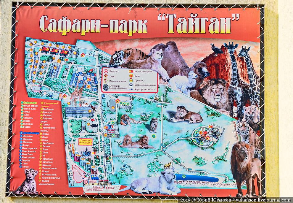 Карта сафари-парка Тайган