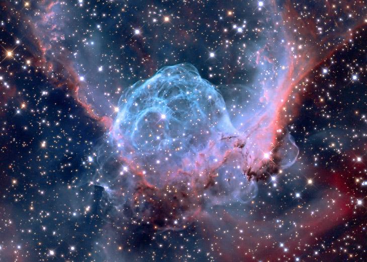 Туманность NGC 2359 «Шлем Тора» в созвездии Большого Пса, находящаяся в 15 000 световых годах от Солнца