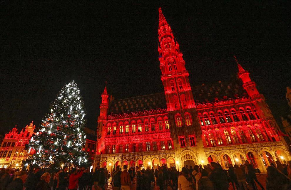 Новогодняя ёлка в Брюсселе, Бельгия