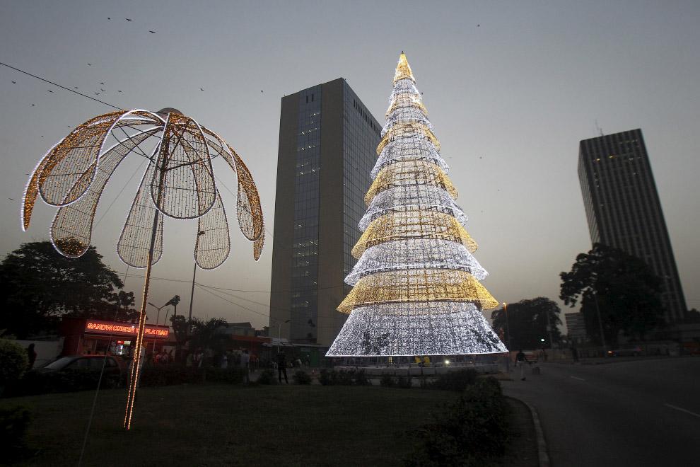 Так выглядят новогодние деревья в Абиджане, Кот-д'Ивуар