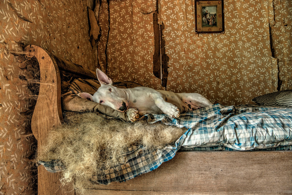 Отдых в заброшенном доме в Люксембурге