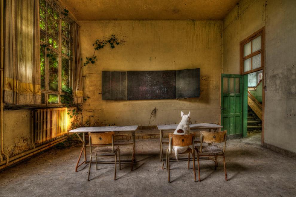 Заброшенная школа в Бельгии