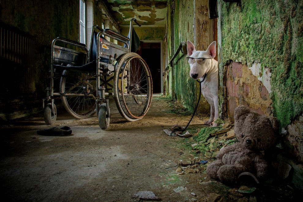 Заброшенный дом престарелых в Бельгии.