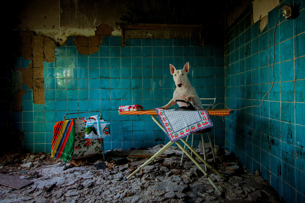 Заброшенный сельский дом в Нидерландах