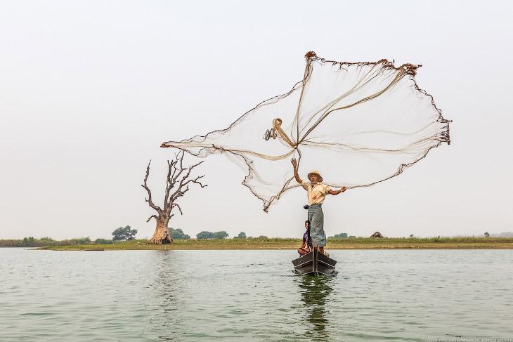 Танец с сетью