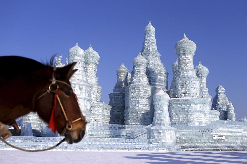 Самая высокая ледяная скульптура здесь имеет высоту около 46 метров