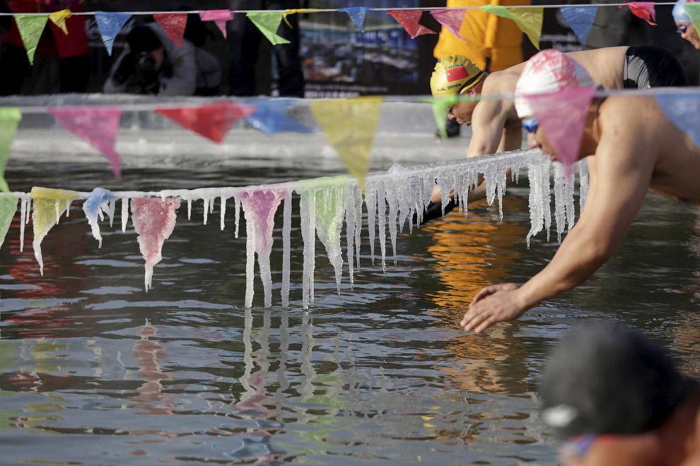 Любители экстрима могут принять участие в соревнованиях по плаванию под сосульками