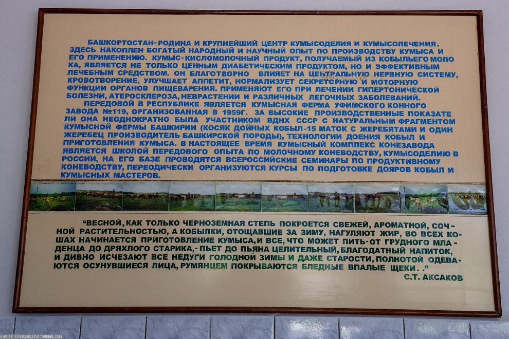 Уфимский конный завод