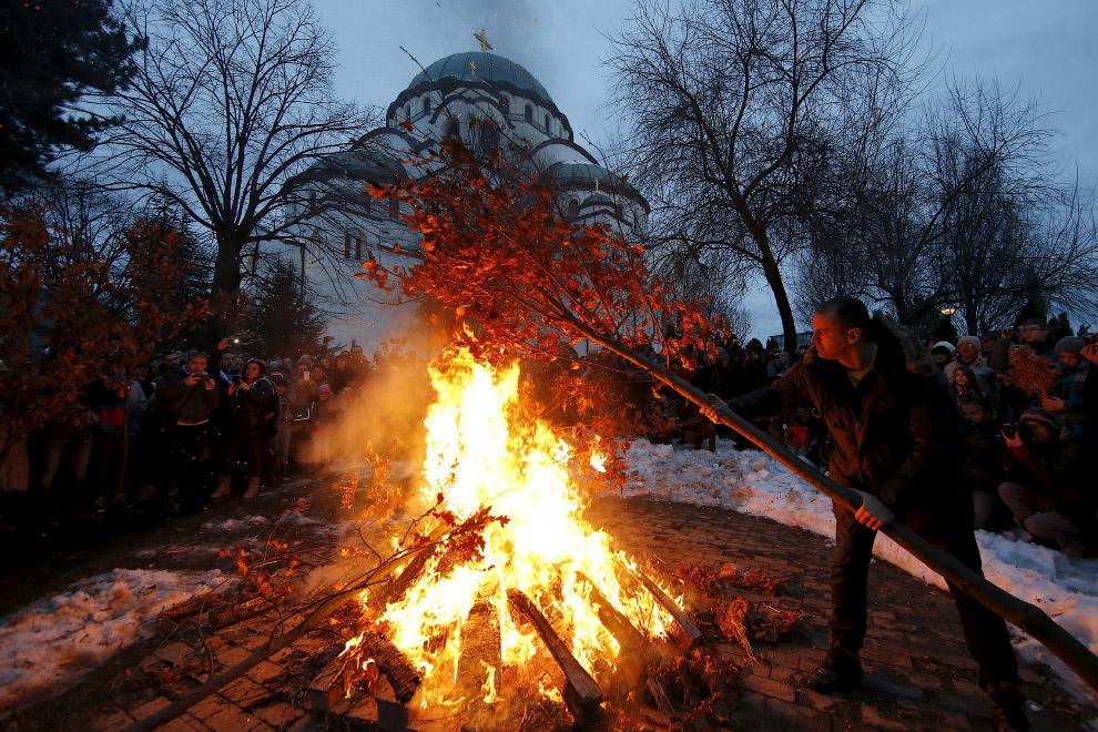 Главный атрибут сербского Рождества — дубовые ветви