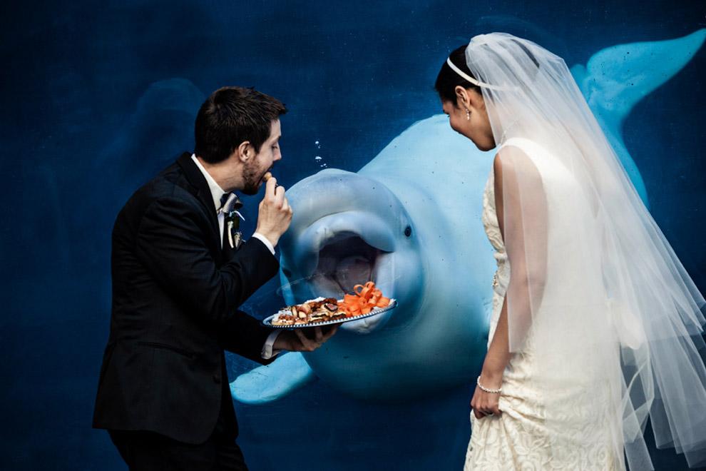 Конкурс поймать невесту