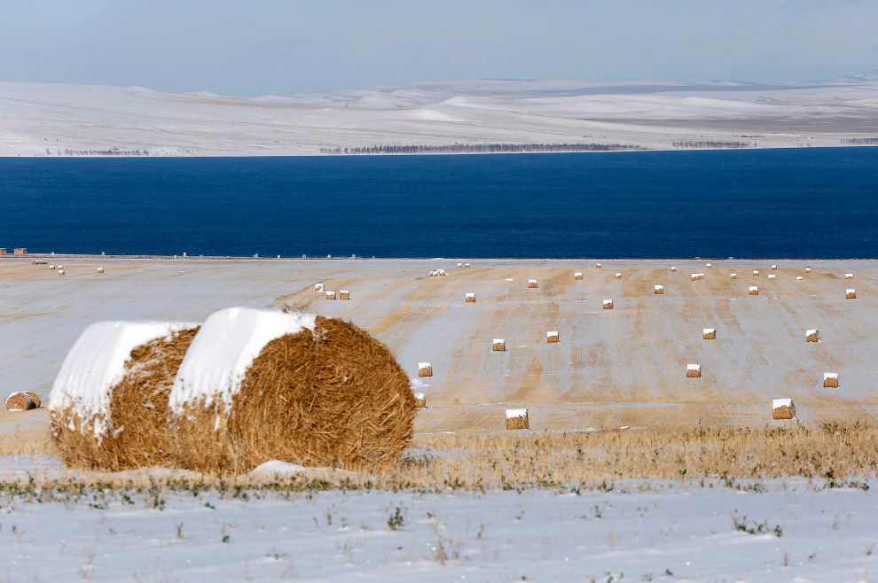 Кипы сена в снегу возле озера Беле в Хакасии