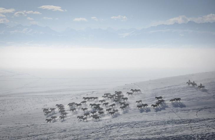 Пастухи и лошади на снегу в Монголкюре