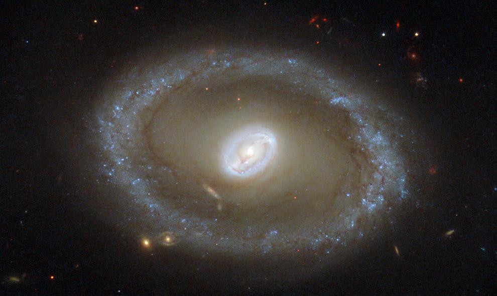 Галактика NGC 3081 в созвездии Гидра